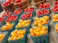 Farmers' Market at National Harbor Every Saturday and Sunday