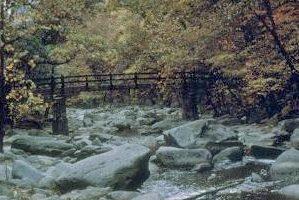 Rock Creek Park courtesy NPS