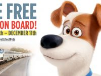 Pets Ride Free on Amtrak