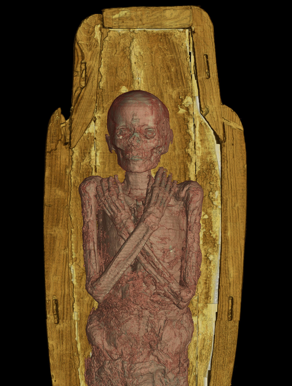 American Museum Of Natural History Mummies