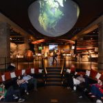 Adult Sleepover at the Museum of Natural History