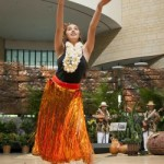 Celebrate Hawaii Festival May 25 and 26